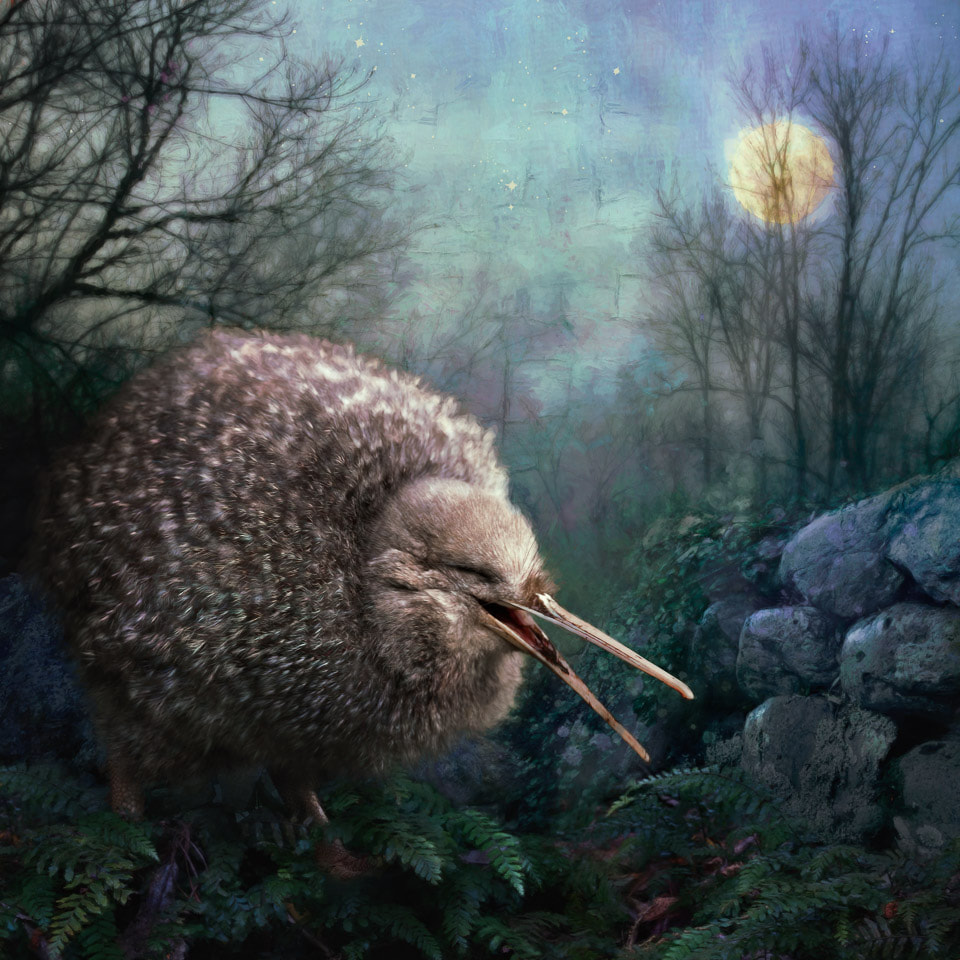 Photo art of a laughing kiwi out for a moonlit stroll