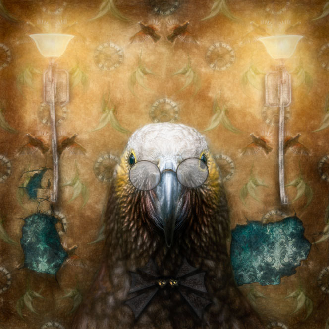 Photo-art of a kākā posing for her picture in front of kākā-themed wallpaper