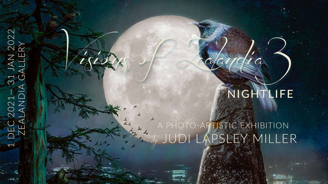 Banner for Visions of Zealandia 2: the big idea - Solo Exhibition by Judi Lapsley Miller 1 July - 31 Aug 2019 Zealandia EcoSanctuary Gallery, Wellington, New Zealand.  Photo-artistic bird art featuring kākā, tūī, and toutouwai.